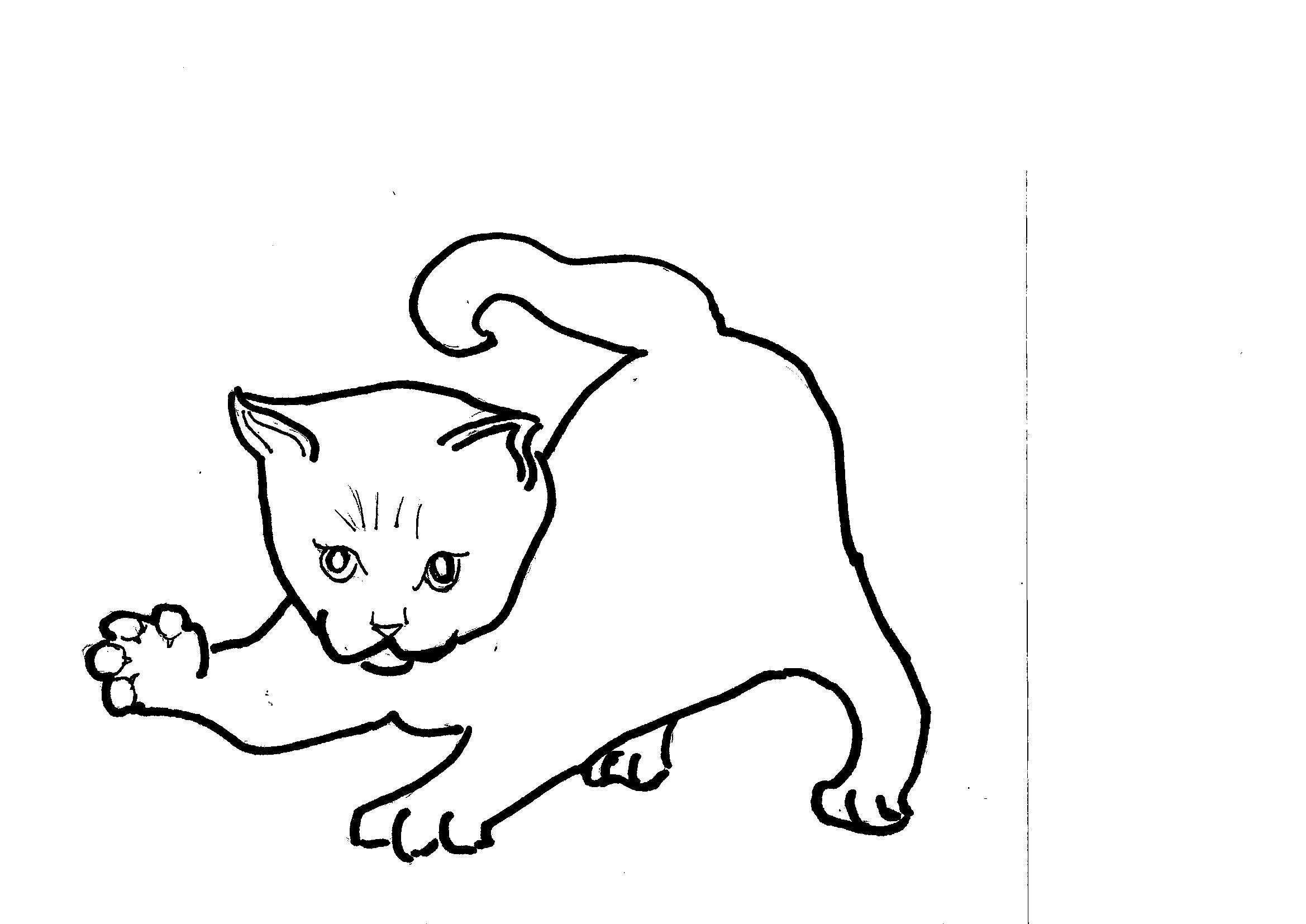 Disegni da colorare bambini i gattino - Gatto disegno modello di gatto ...