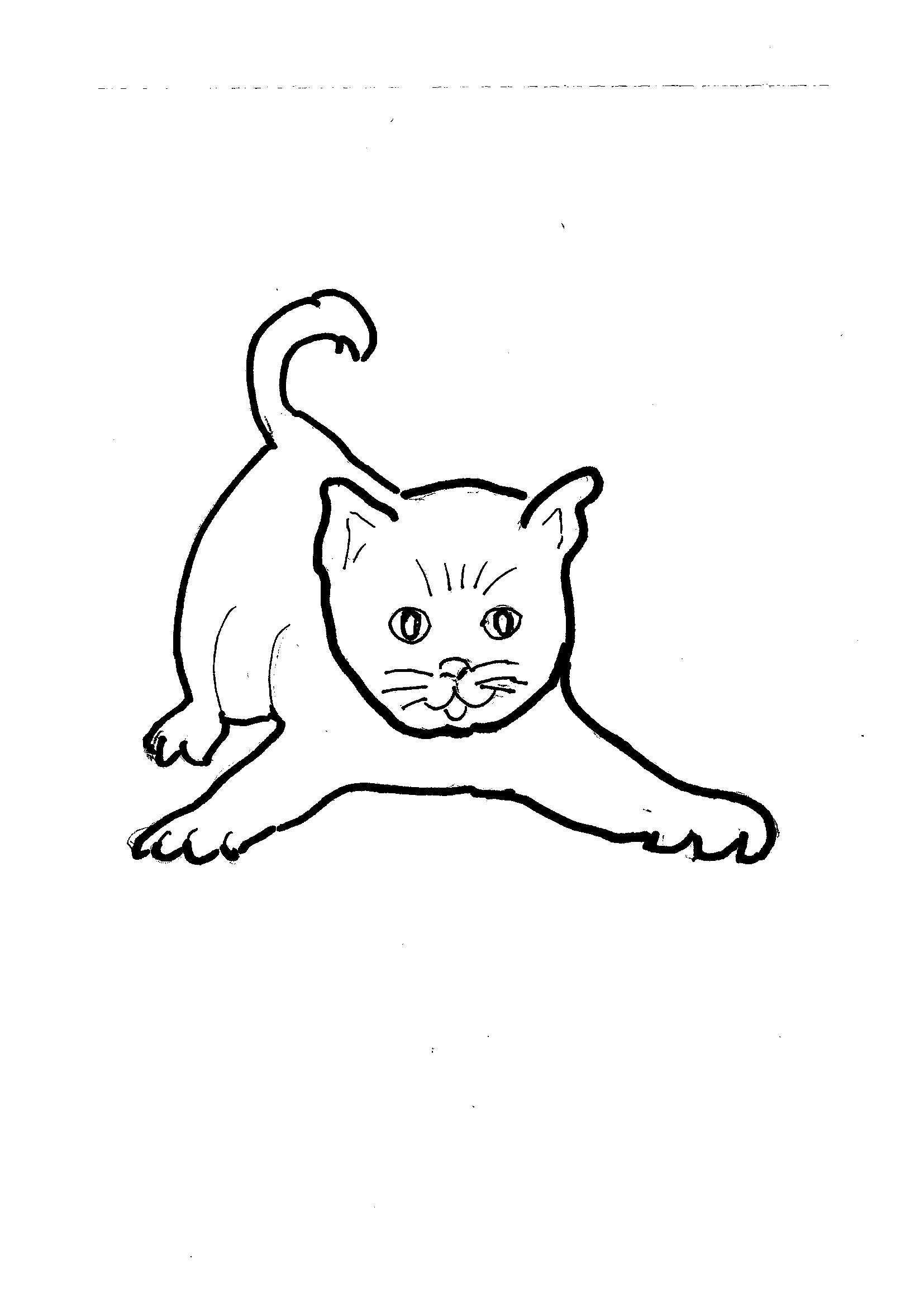 Disegni Da Colorare Bambini I Gatto Pippo