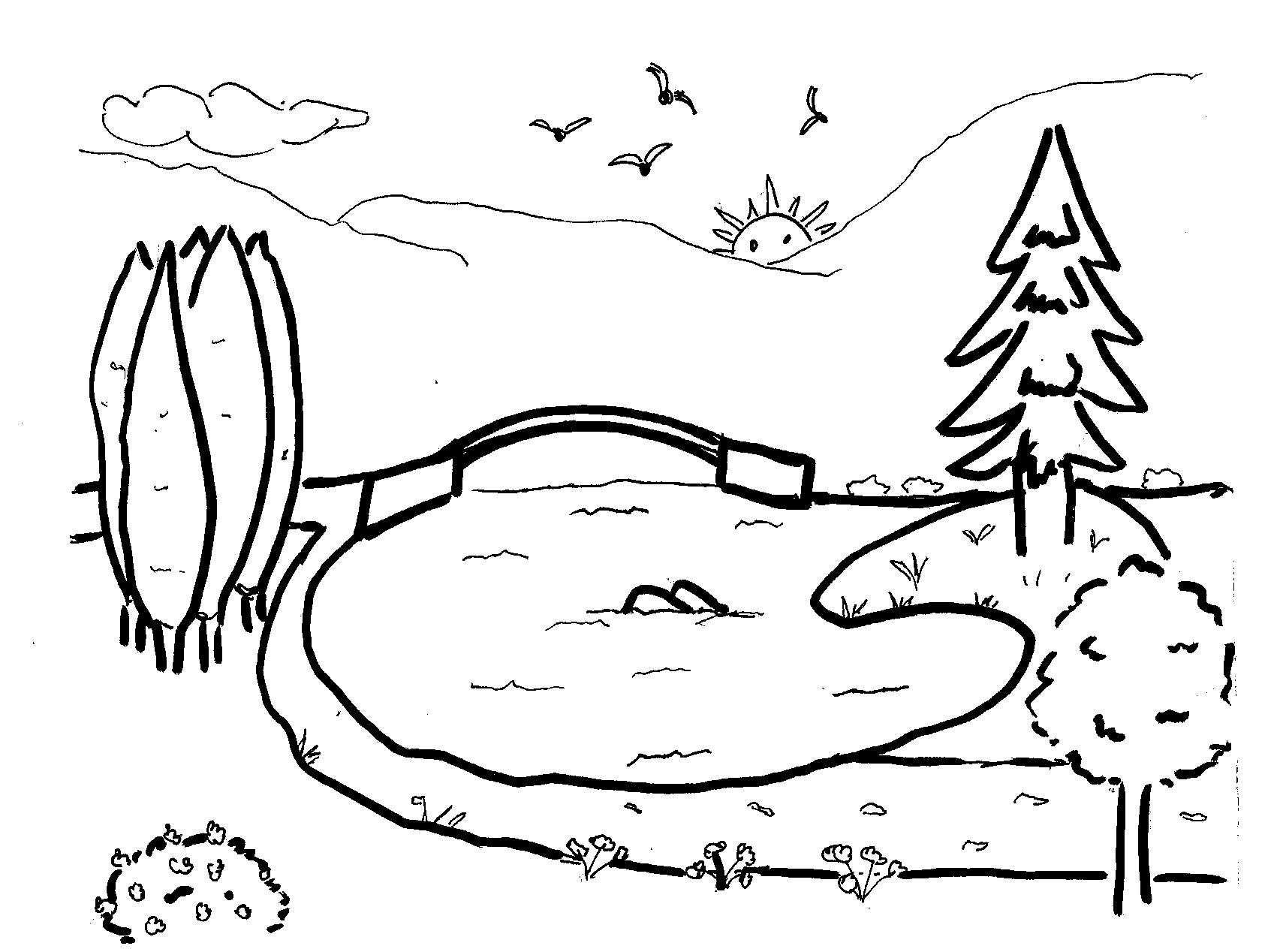 Disegni da colorare bambini i paesaggio for Animali da laghetto